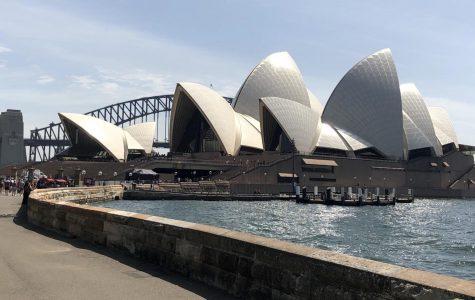 Labor's progressive left lives in Sydney