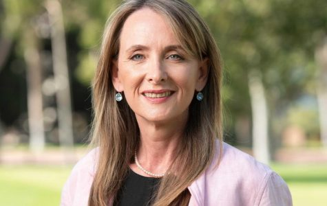 Education, representation first for Labor's Melita Markey