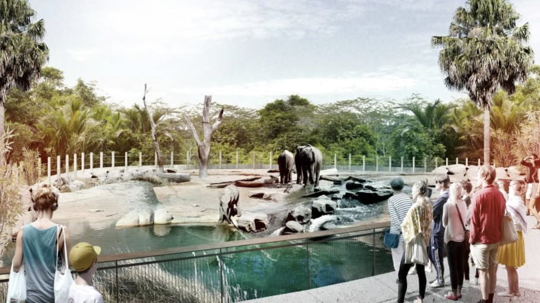The early artist renders of plans for the Sydney Zoo which will feature a number of underwater exhibits