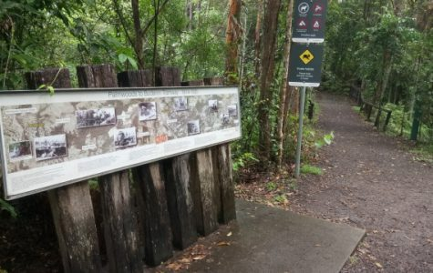 Buderim wants its train back