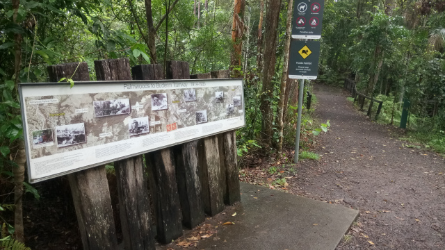The+remnants+of+the+Buderim+tramway+are+now+a+walking+track.+