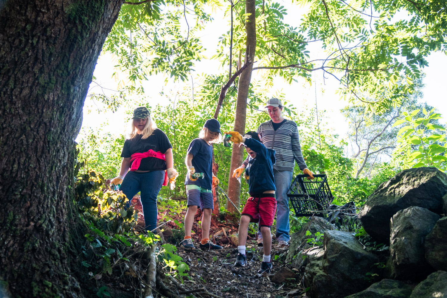 Volunteers scour bushlands as they clean up the environment around Obi Creek at Maleny in the Sunshine Coast hinterland.
