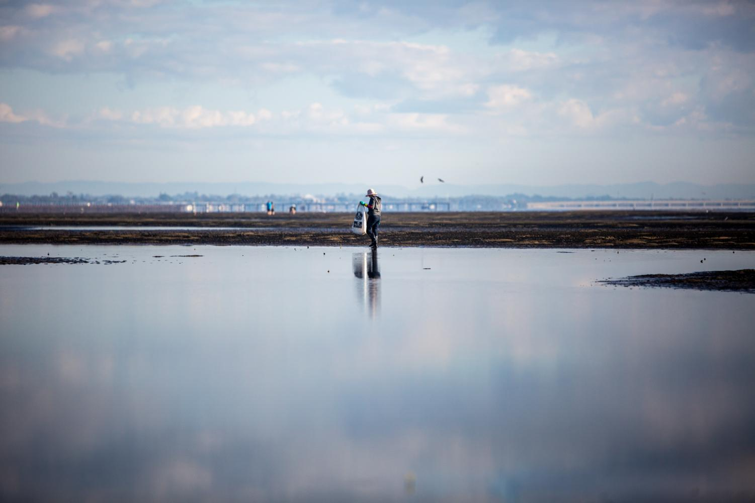 A volunteer collects plastics and other waste at Nudgee Beach.